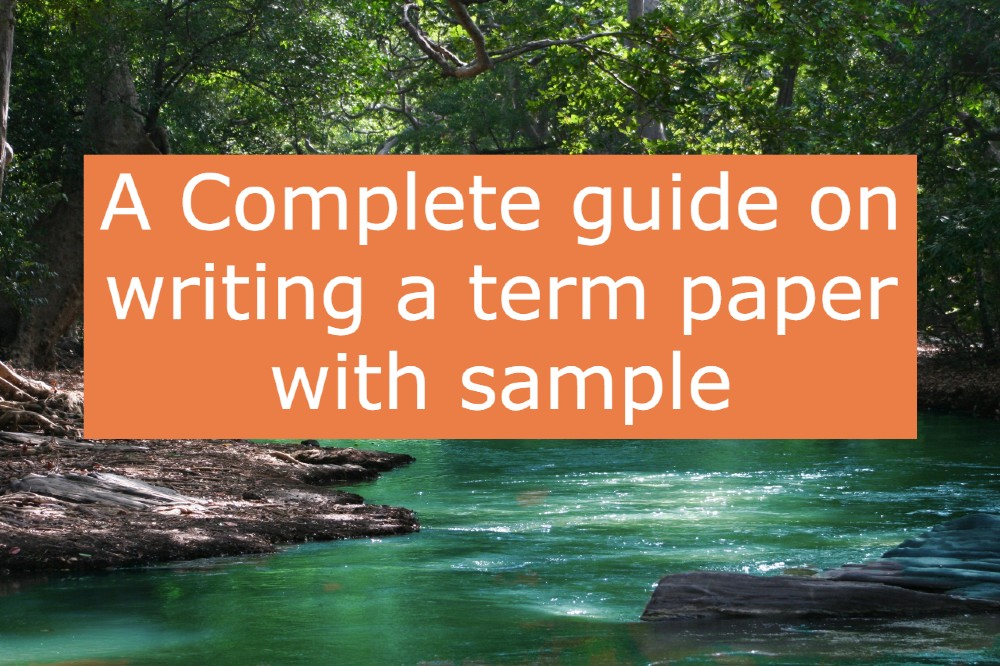 guide-on-writing-term-paper